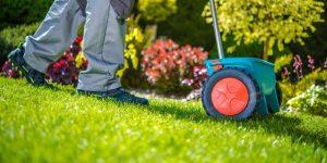homeowner overseeding lawn in springtime